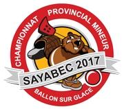 logo_championnat_provincial_ballon_sur_glace_sayabec2017.jpg